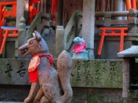 Fushimi Inari shrine fox Kyoto 2010 Micah Gampel