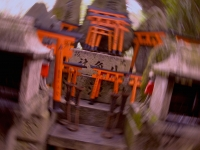 fushimi-inari-kyoto-saturday-october-25-2014-micah-gampel_8323