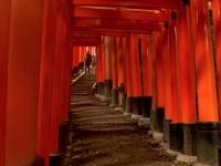 Fushimi Inari torii Kyoto 2010 Micah Gampel