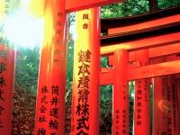 Fushimi Inari torii sunset Kyoto 2010 Micah Gampel