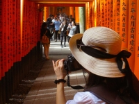 julie-kremen-saturday-october-25-2014-fushimi-inari-kyoto-micah-gampel_8276-copy
