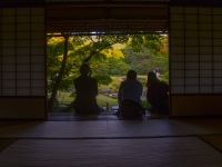 julie-phil-murin-an-saturday-october-25-2014-kyoto-micah-gampel_8505