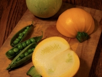 zucchini-peas-from-keihokucho-kyoto-june-20-2012-micah-gampel_4198s