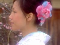 chelsea-shinbashi-dori-gion-2013-kyoto-micah-gampel-copy