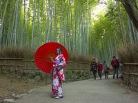 rose-sampaga-benedict-b-sauri-arashiyama-kyoto-dec-6-2014-micah-gampel-photography_9802