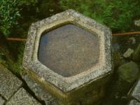 Tofukuji temple garden detail Kyoto 2009 Micah Gampel